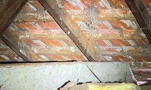 delignification of roof rafters and battens